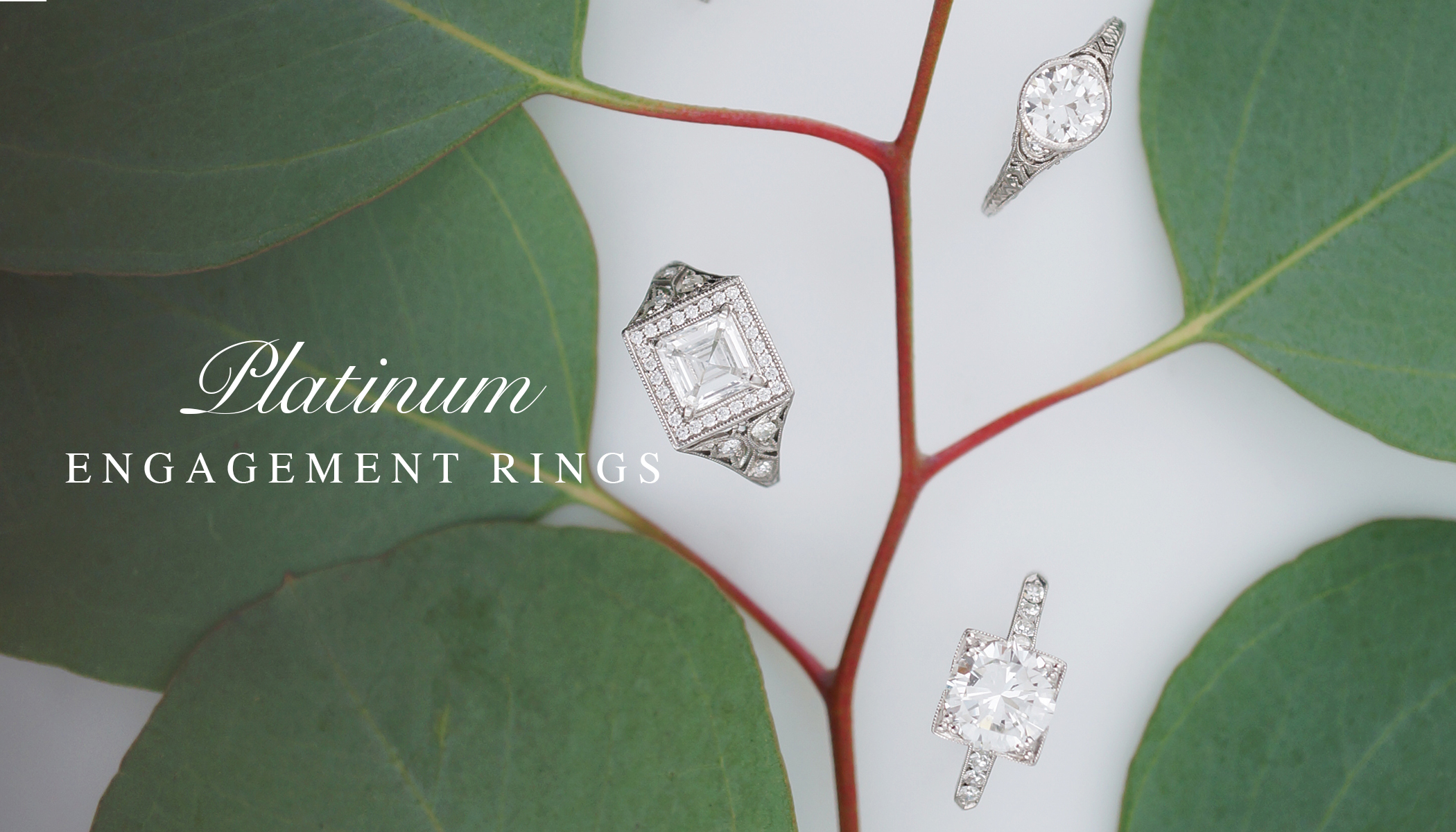 PlatinumEngagementRing_DiamondEngagementRing_FiligreeJewelers_Minneapolis_Northloop